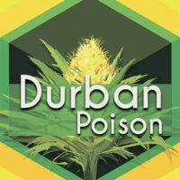 Durban Poison Logo