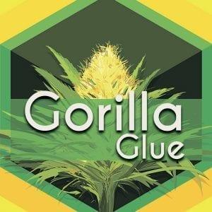 Gorilla Glue, AskGrowers