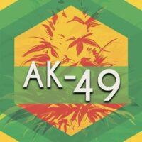 AK-49 Logo