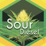 Sour Diesel (Sour Deez, Sour D)