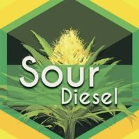 Sour Diesel (Sour Deez, Sour D) Logo