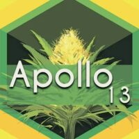 Apollo 13 Logo