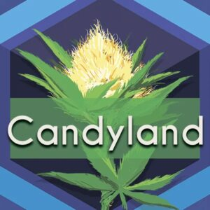 Candyland, AskGrowers