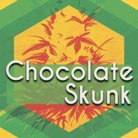 Chocolate Skunk Logo
