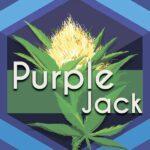 Purple Jack (Purple Jack Herer)