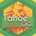 Tahoe OG (Tahoe OG Kush)