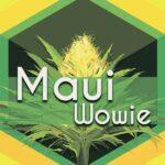 Maui Wowie (Maui Waui)