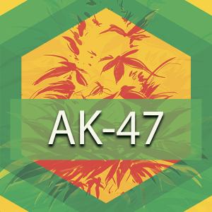 AK-47, AskGrowers