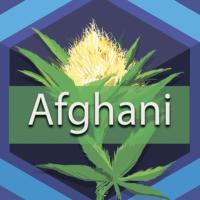 Afghani (Afghan) Logo