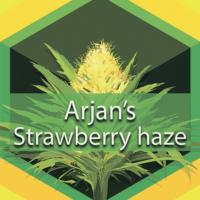 Arjan's Strawberry Logo