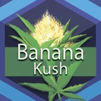 Banana Kush Logo