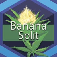 Banana Split Logo