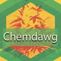 Chemdawg (91 Chemdog, Chemdog 91) Logo