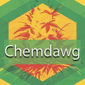 Chemdawg (91 Chemdog, Chemdog 91), AskGrowers