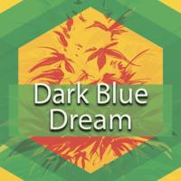 Dark Blue Dream Logo