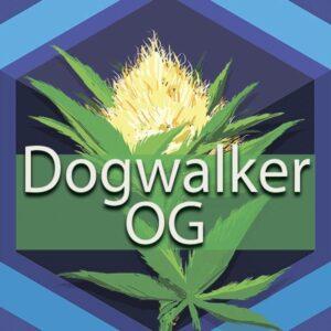Dogwalker OG, AskGrowers