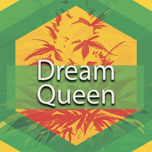 Dream Queen, AskGrowers
