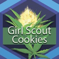 Girl Scout Cookies Logo