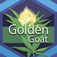 Golden Goat Logo