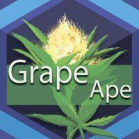 Grape Ape Logo