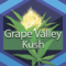 Grape Valley Kush (GVK)