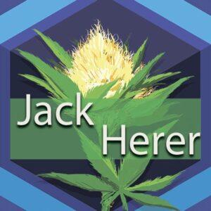 Jack Herer, AskGrowers