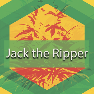 Jack the Ripper (JTR), AskGrowers