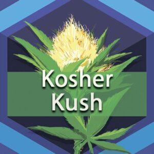 Kosher Kush, AskGrowers