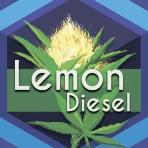 Lemon Diesel, AskGrowers