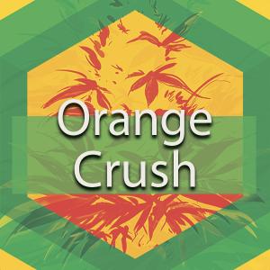 Orange Crush, AskGrowers