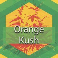 Orange Kush Logo