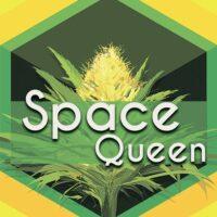 Space Queen Logo