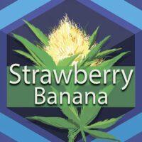 Strawberry Banana (Strawnana) Logo