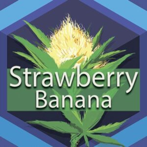 Strawberry Banana (Strawnana), AskGrowers