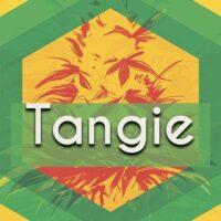 Tangie Logo