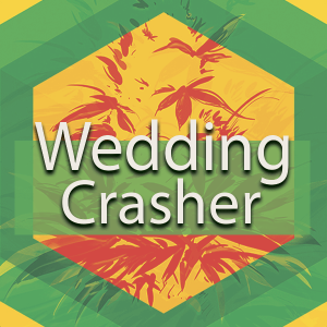Wedding Crasher, AskGrowers