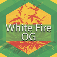 White Fire OG (WiFi, White Fire) Logo