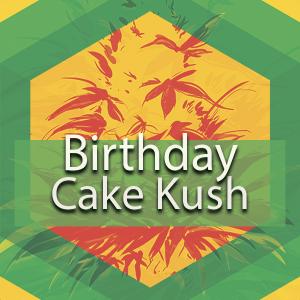 Birthday Cake (Birthday Cake Kush), AskGrowers