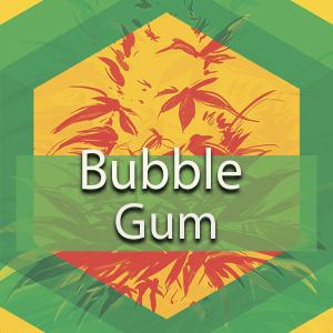 Bubblegum, AskGrowers
