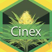 Cinex (Cenex) Logo