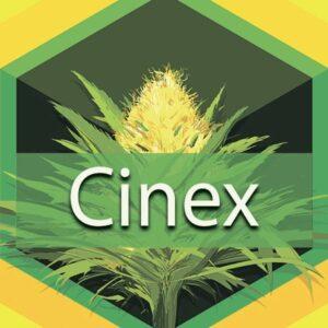 Cinex (Cenex), AskGrowers