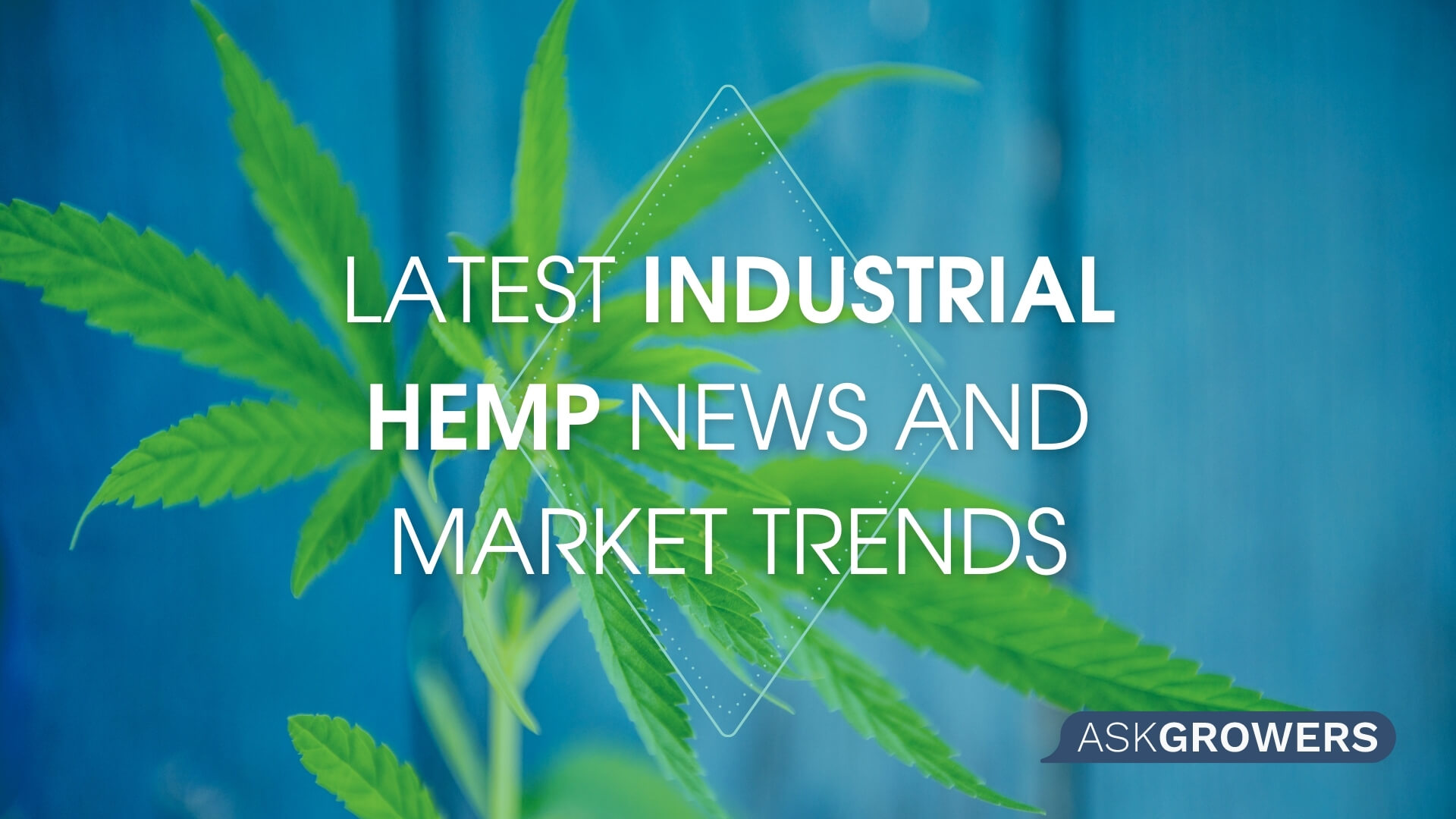 Latest Industrial Hemp News and Market Trends, AskGrowers