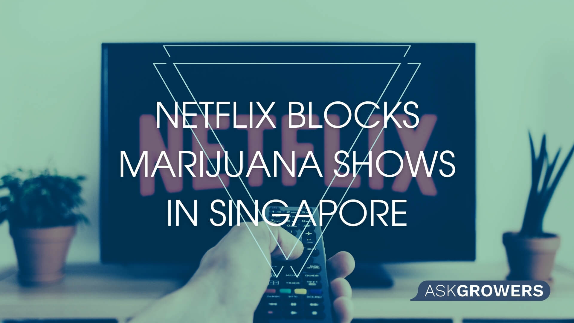 Netflix Blocks Marijuana Shows in Singapore in Response to Government Demands, AskGrowers