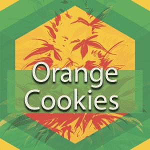 Orange Cookies, AskGrowers