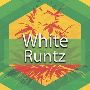 White Runtz, AskGrowers