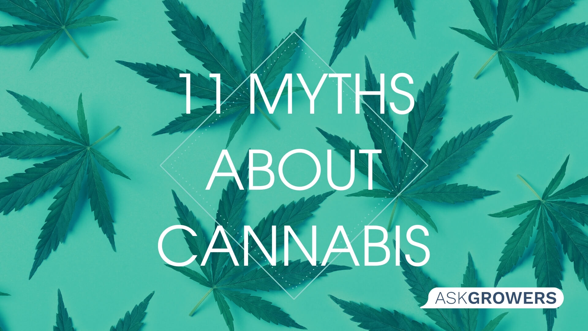 11 Myths and Misconceptions About Cannabis, AskGrowers