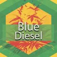 Blue Diesel (Blue City Diesel, New Blue Diesel) Logo