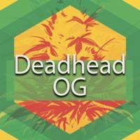 Deadhead OG Logo