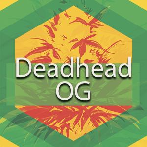 Deadhead OG, AskGrowers