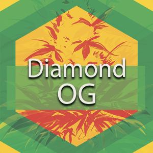 Diamond OG, AskGrowers